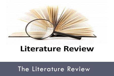 Online dissertation help literature review